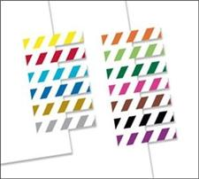 Redi-Tag Small Page Flags Striped 13 Assorted Colors